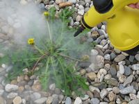 Weedkilling and sterilising with steam