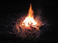 burning dry branches on a bonfire to produce wood ash (potash)