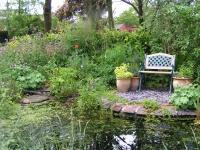 Garden pond - Richard Burkmarr
