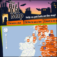 Big-bat-map