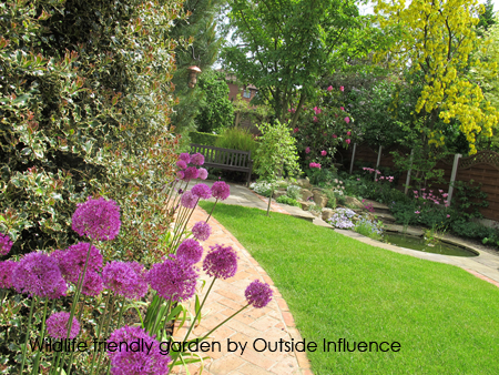 Wildlife friendly garden after Outside Influence
