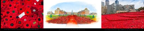 Poppy project chelsea flower show 2016