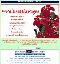 The_poinsettia_pages